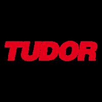 Tudor2